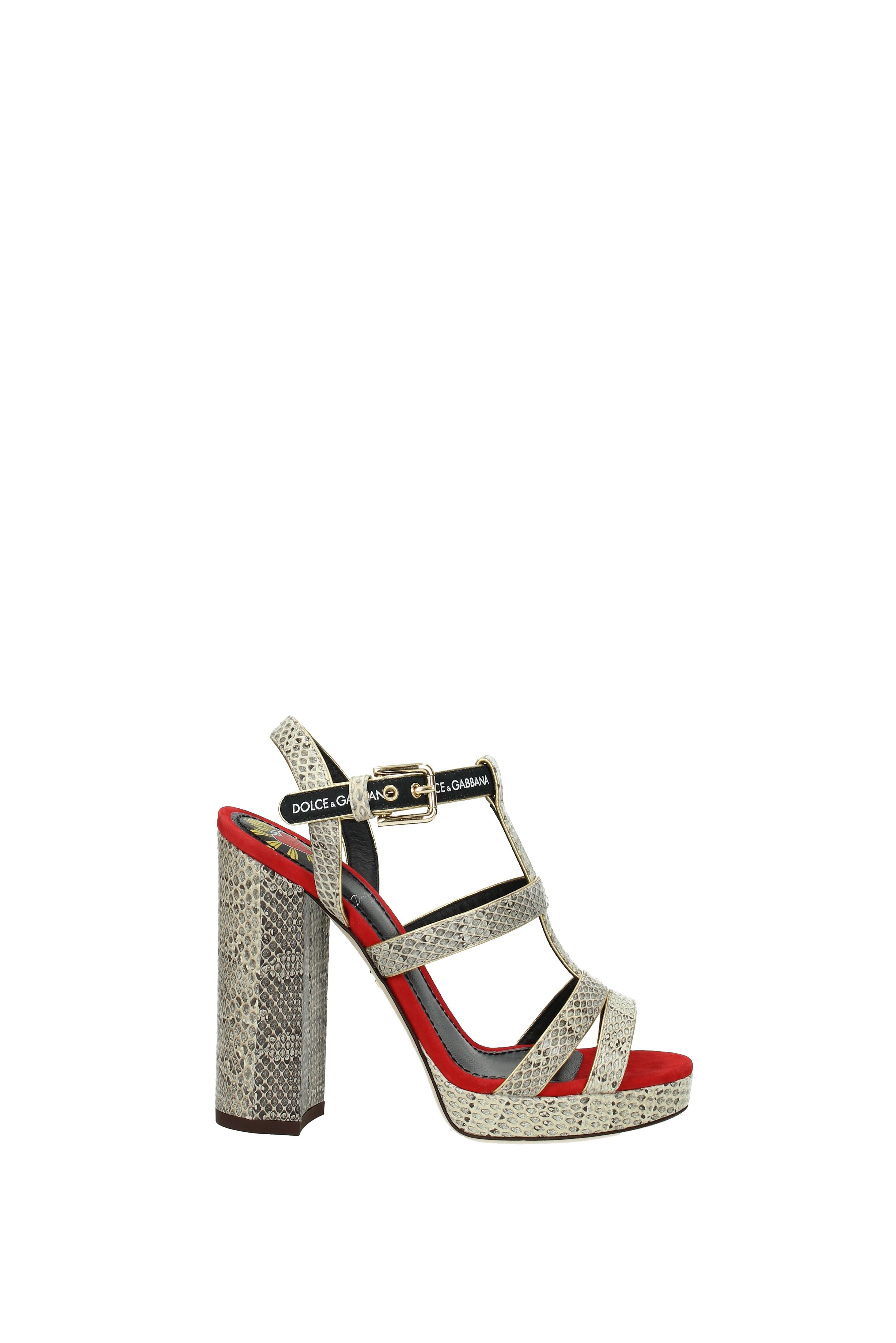 Sandalen Dolce&Gabbana Damen - Leder  Schlange (CR0562AN783) (CR0562AN783) Schlange 76001c
